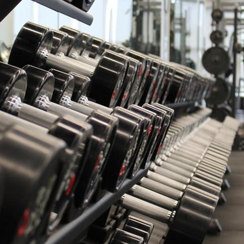 shaza gym